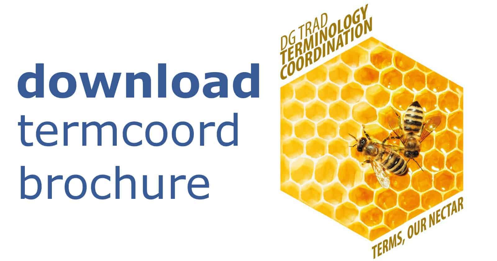 download termcoord brochure