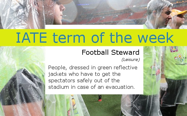 IATE term of the week football steward