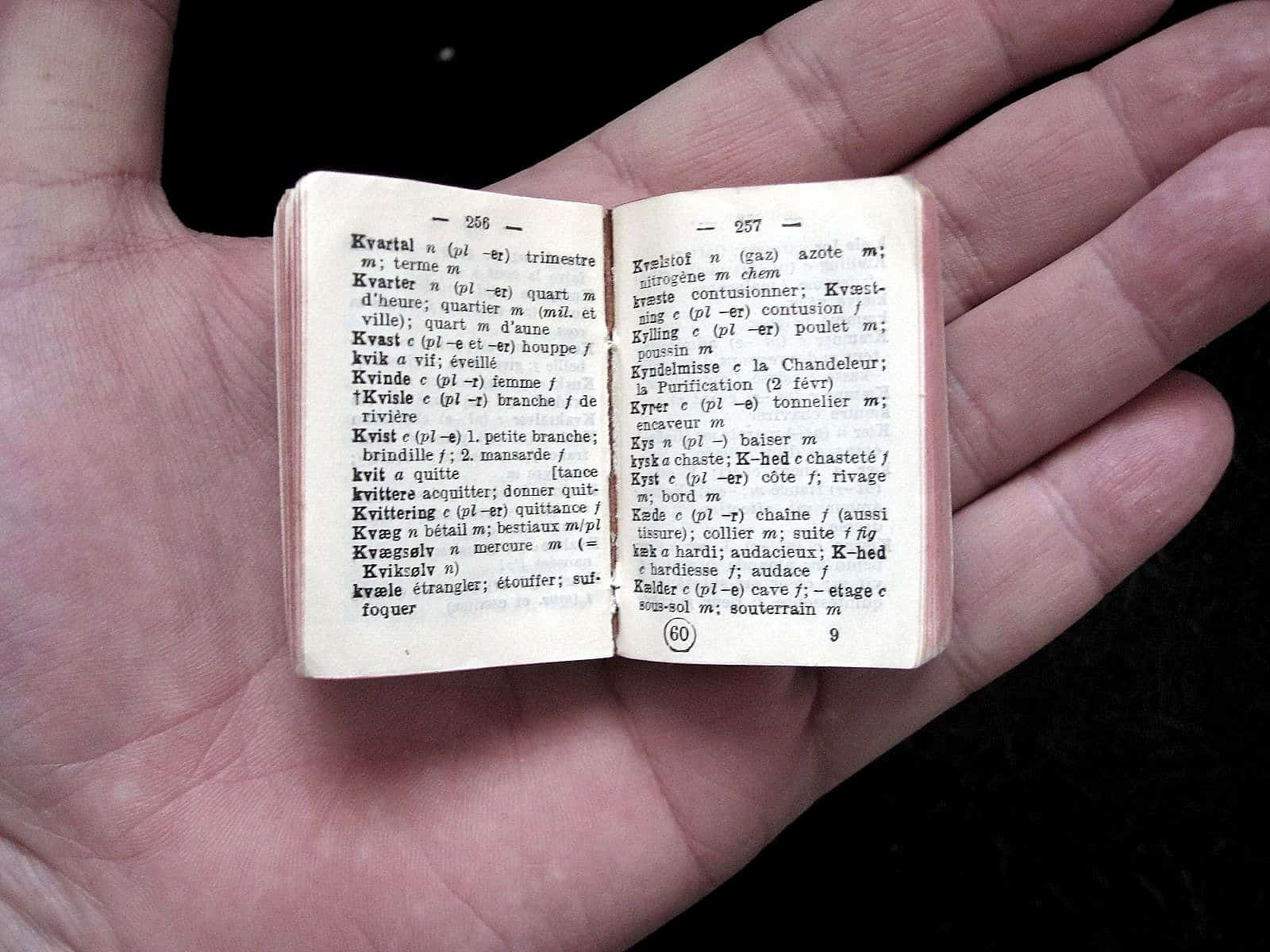Miniature_DNF_Dictionary_055_ubt