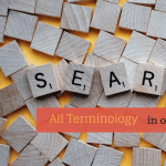 Search all Terminology in one click