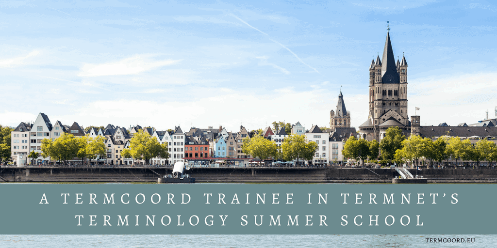A TermCoord Trainee in TermNet's Terminology Summer School banner - A view of Cologne, Germany