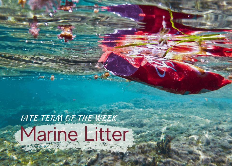 IATE Marine Litter banner