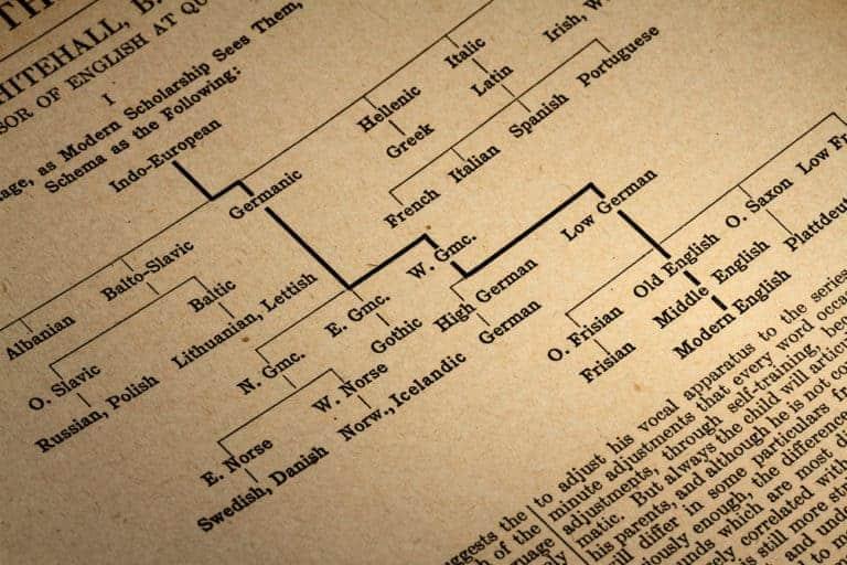Video-Fix Proto-Indo-European, Ep.2: Schleicher´s fable