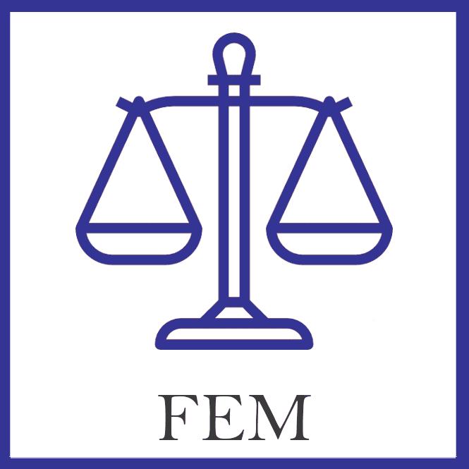 FEM Front1