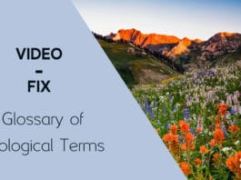 Glossary of Ecological Terms